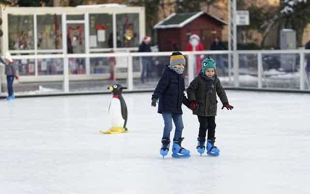опора для катания на льду пингвин